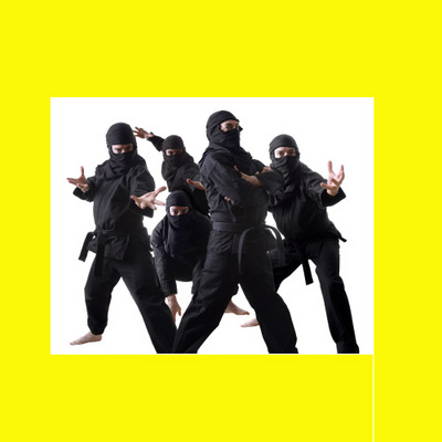 Product picture RARE Secret Ninja tactics NINJITSU FIGHT PROTECT SKILL